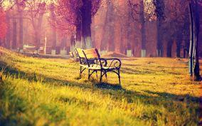 memories-_3