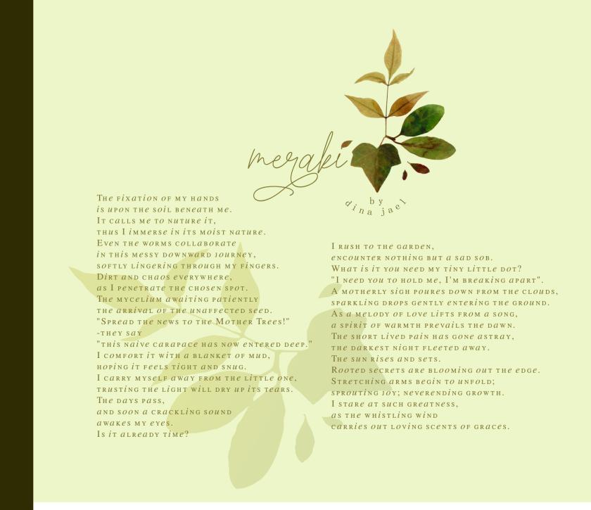 meraki poem - dina jael